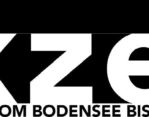 logo_akzent_400x90